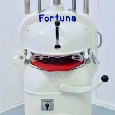 Fortuna 4 делитель-округлитель